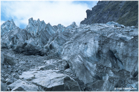 Fox Glacier, South Island